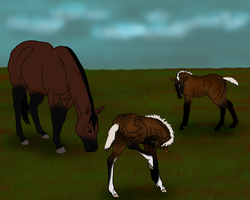 The result of an unlikely pair by angry-horse-for-life