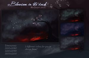 Blossom In The Dark Wallpaper Pack by KovoWolf