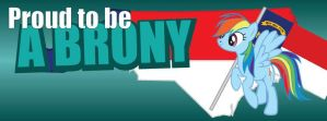 NCB Facebook Cover Photos - Brony, Rainbow Dash by elvisshow