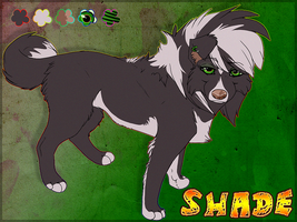 Shade Ref V.2 by Soldjagurl