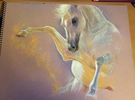 Arabian horse PASTEL by Elsouille
