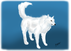 Arctic Wolf for Euchre by DragonzFire95
