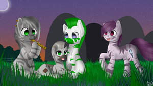 Zebras by DitzyHooves