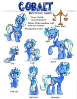 Commission: Cobalt Reference Guide by frostykat13