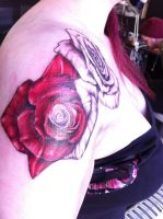 Red Roses by robynrockin