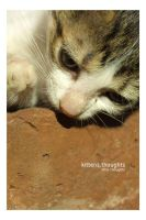 kitten.thoughts by arwenita