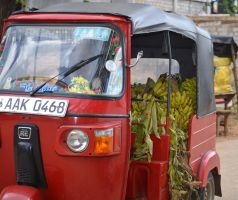 Green grocery tuk-tuk. by jennystokes
