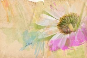 Watercolor Effect by veronikaBIS