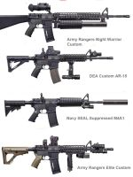 R7S Custom Carbines and Rifles by deadfuze