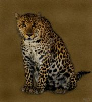 Jaguar Painting by chamirra