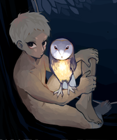 owl guy by meccchi