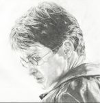 Harry Potter by michaelmdw