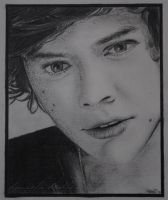 Harry Styles Fabulous Drawing by ItsDaniDee