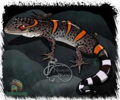 Chinese Cave Gecko by NadilynBeato