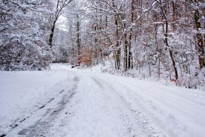 SNOWY ROAD by FOTOSHOPIC