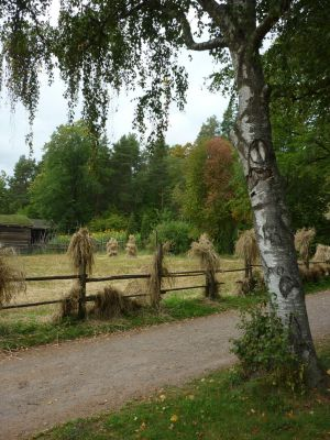 Autumn at the Folk Museum by GerdElise