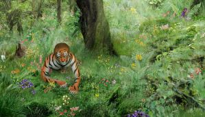 Tiger In The Jungle Widescreen by yoklmn