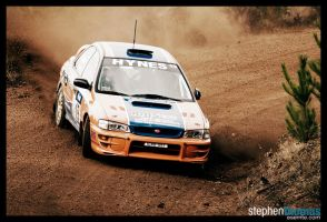 ARC - QUIT Forest Rally - I by esemte