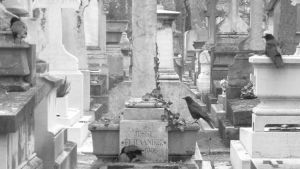 Crows of Pere Lachaise by Azvolrien
