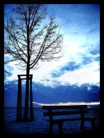 Lonely Bench by maaanuel