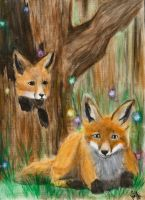 Foxes and Faeries by shadowlotr