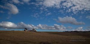 The Shearing Shed by FireflyPhotosAust