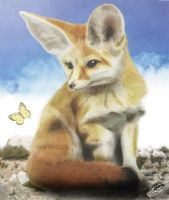 Fennec Fox by SheltieWolf