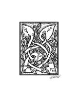 Celtic Entwined Vines by foxvox