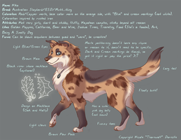 Niko Character Sheet 2010 by thornwolf