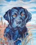 Black Lab by HillaryWhiteRabbit