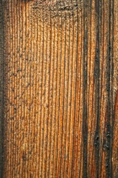 Wood1 by texturesII