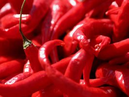 Red Chilies by fl8us