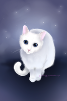 White kitty by Juneau-88