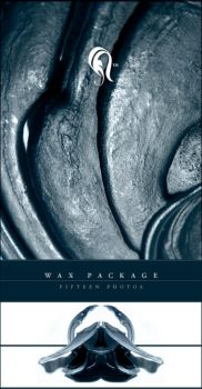 Package - Wax - 1.5 by resurgere