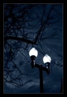 Park Lights by mrsselfdestruct