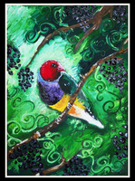 Gouldian Vines by SunStateGalleries