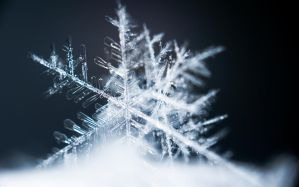 Snowflake No 2 by Condor81