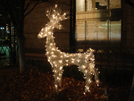 Light Reindeer 3 by SephirothXer0-Stock