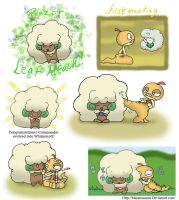 A bond between a Whimsicott and a Scraggy by Maramasama