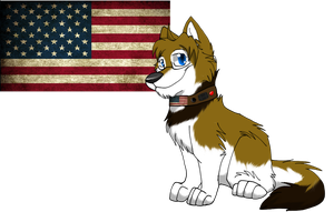 America by Obsidianthewolf