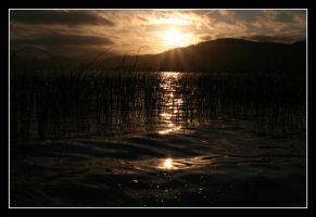 the lake III - a sunny... by JacquesPhotography