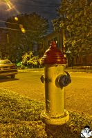 Hydrant And Street HDR by patganz