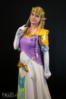 Princess Zelda Pose by Miharichu-Emi