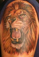 Lion by Phedre1985