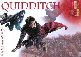Quidditch by MovieBuster