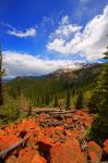 Red Rocks.Blue Sky.Green Trees by greenunderground