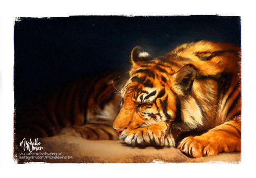 Tiger's Daydream by Michelle-Winer