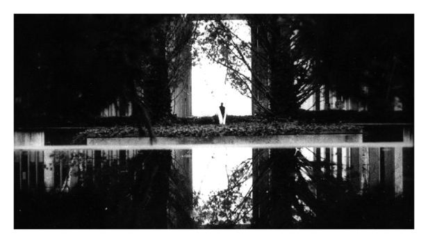 Reflections of Life by fasa