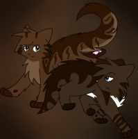 Brambleclaw and Hawkfrost by Yin-Meep