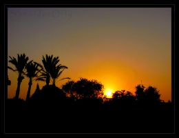 Neve Tsedek- sunset by O-N